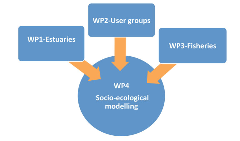about-project-work-packages-estuarize-wio-socio-ecological-assessment-fisheries-estuarine-systems-sw-indian-ocean