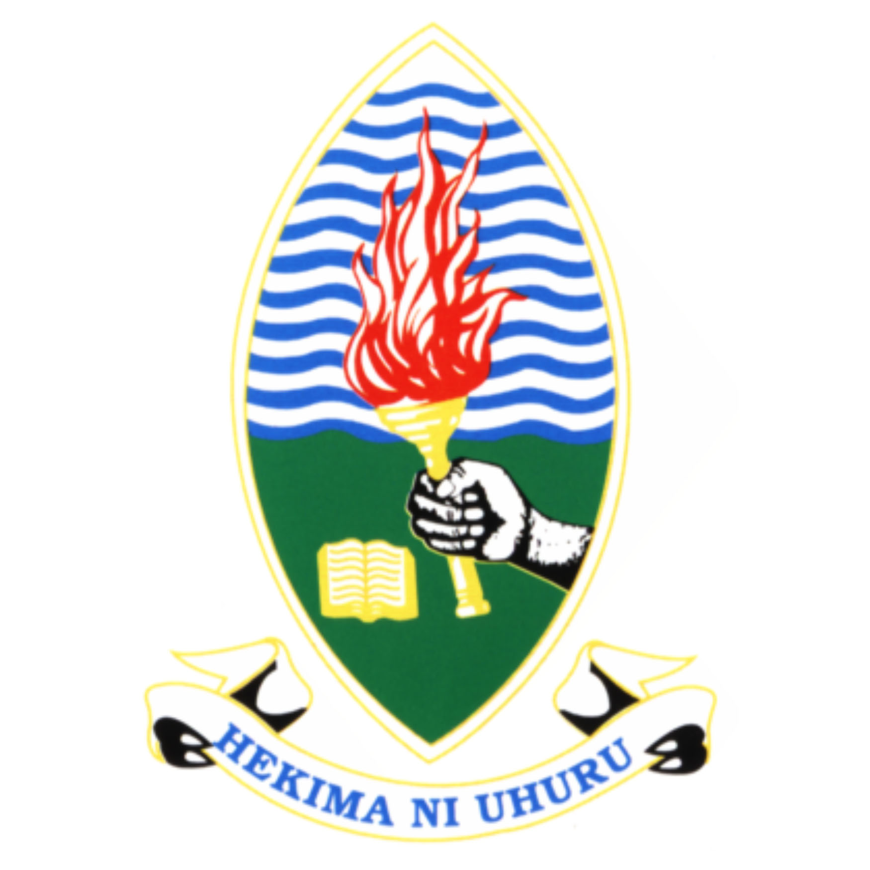 partner-institutes-estuarize-wio-university-of-dar-es-salaam-tanzania
